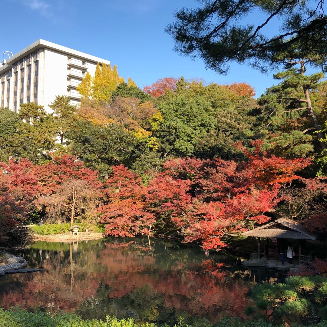 友達の結婚式で行きました。 庭園がちょうど紅葉の時期で綺麗でした。...