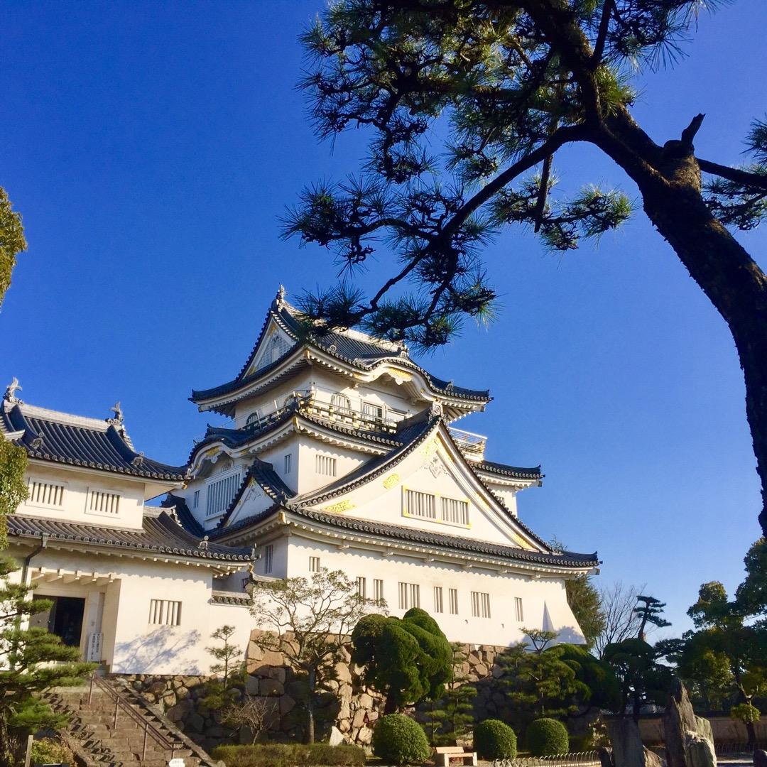 #岸和田城 そこまで大きなお城ではないかも知れませんが、どの角度か...